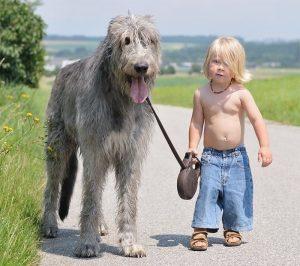 Let's get a walk!