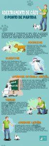 Como adestrar seu cachorro – Infográfico