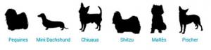 lassie-tamanho-pets.fw