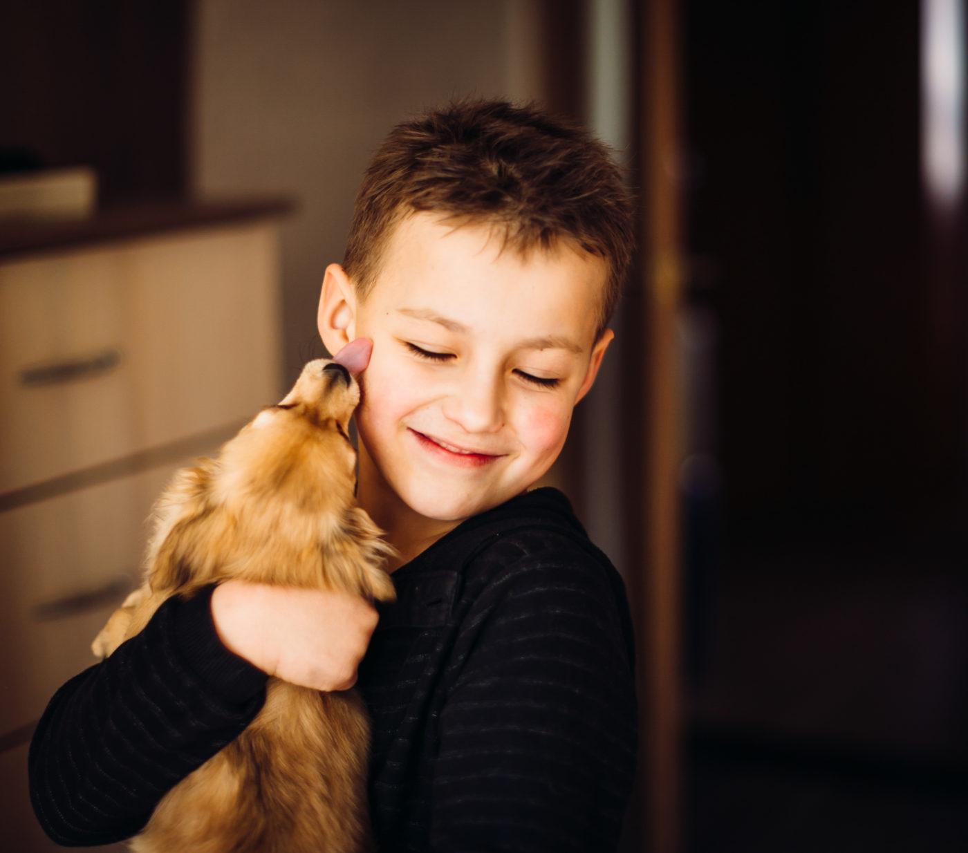 Os quatro motivos para adotar um Cachorro - Faz bem a saúde