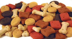 pointer-biscuit-treats-vdga