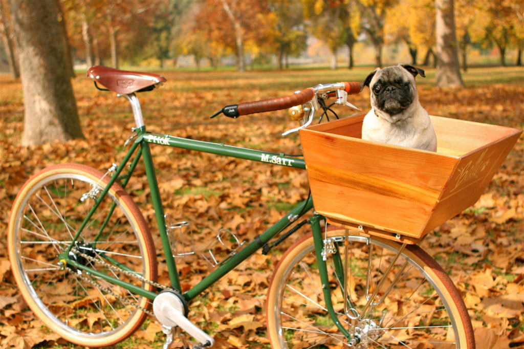 5-dicas-bicicleta-lassie-05