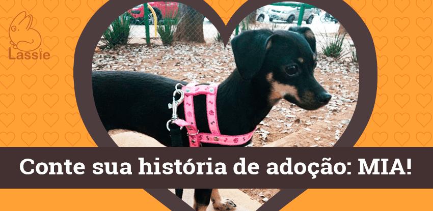Conte a sua História de Adoção - Mia