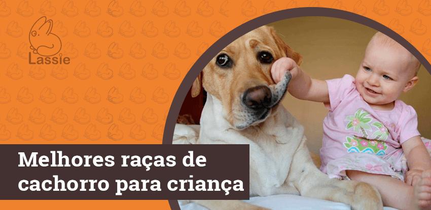 Melhores raças de cachorro para criança